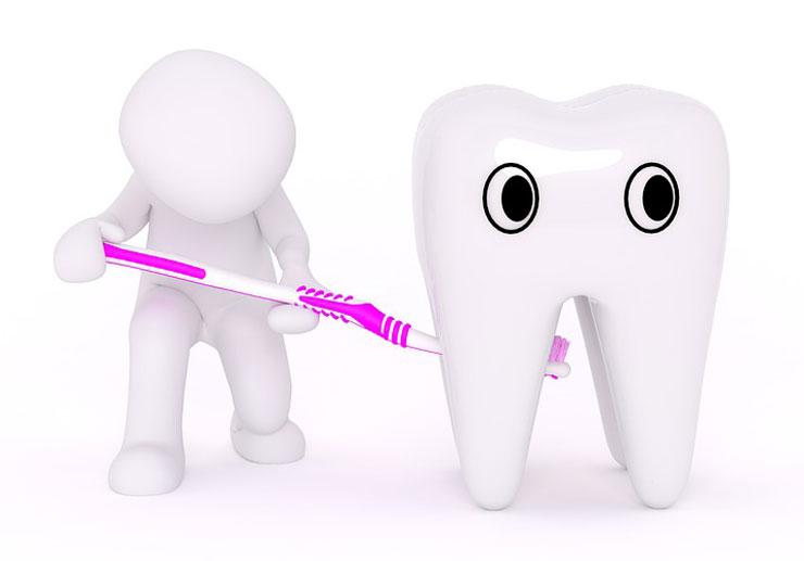 Besuch der Zahnärztinnen am Gründelberg (Themenbild: Pixabay, Peggy Marco)